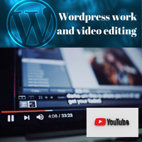 Wordpress and social media person to edit videos and website