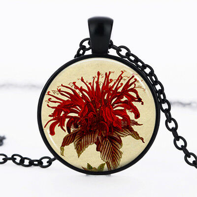 Red Flower Photo - Red Flower photo Black Dome Glass Cabochon Necklace chain Pendant #435