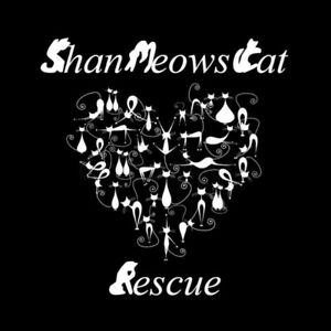 ShanMeow's Cat Rescue
