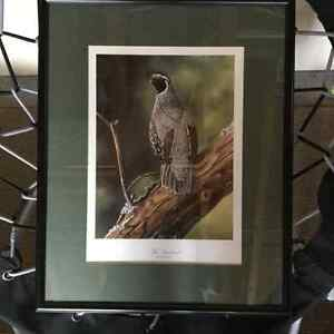 FRAMED PRINT/PICTURE