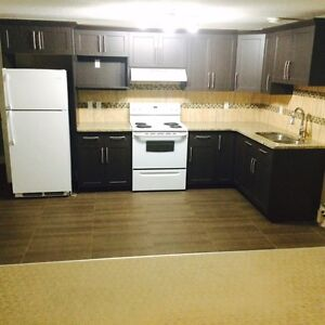 2 bedroom basement suite for $1050 with power,heating TV,interne