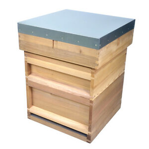 NATIONAL Beehive, 14x12 Brood, Flat Roof, 1 x Supers, CB, Varro Floor, wired QE