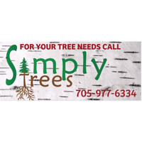 Tree Removal & Pruning In Ptbo