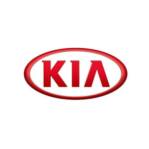 Thousands of New Painted Kia Hoods