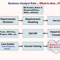 Business Analyst, QA and PMP