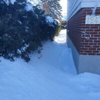 Snow removal from house (just for the snow from Feb. 12)