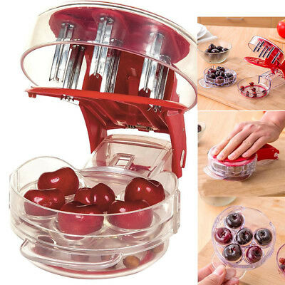 Cherry Pitter - Pitt 6 Cherries at Once Cherries Pitter Seed Removing Tool US