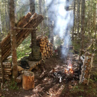 Learn about backcountry camping, skills, cooking, and more