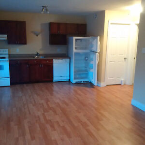 Downtown-newer building-condo style-WASHER&DRYER IN UNIT