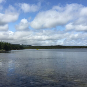 1 Acre Waterfront Cleared Building Lot in Bellevue! St. John's Newfoundland image 5