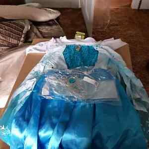 Brand new girls size 4 Elsa dress and accessories Peterborough Peterborough Area image 1