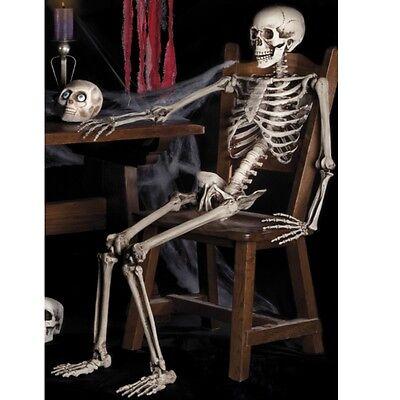 Bewegliches Deko Skelett Modellskelett Gerippe Halloween Dekoration Figur 160 cm