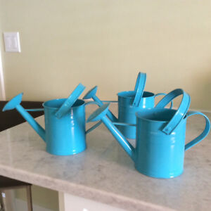 13 Decorative Watering Cans