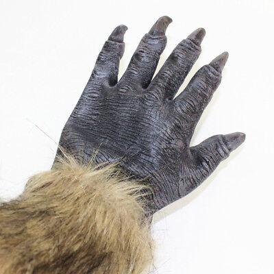 Halloween Wolf Claws (Adults Big Wolf Werewolf Claws Gloves Paws Pair Halloween Fancy Dress Hands)
