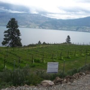 Fully Furnished Available for Rent, in West Kelowna
