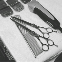 ISO Sharpening Services