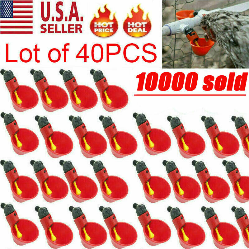40 PACK Poultry Water Drinking Cups Chicken Hen Plastic Automatic Drinker USA