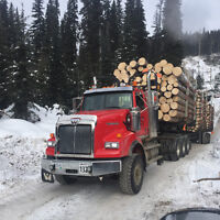 Require Off highway log truck driver, Mackenzie Area
