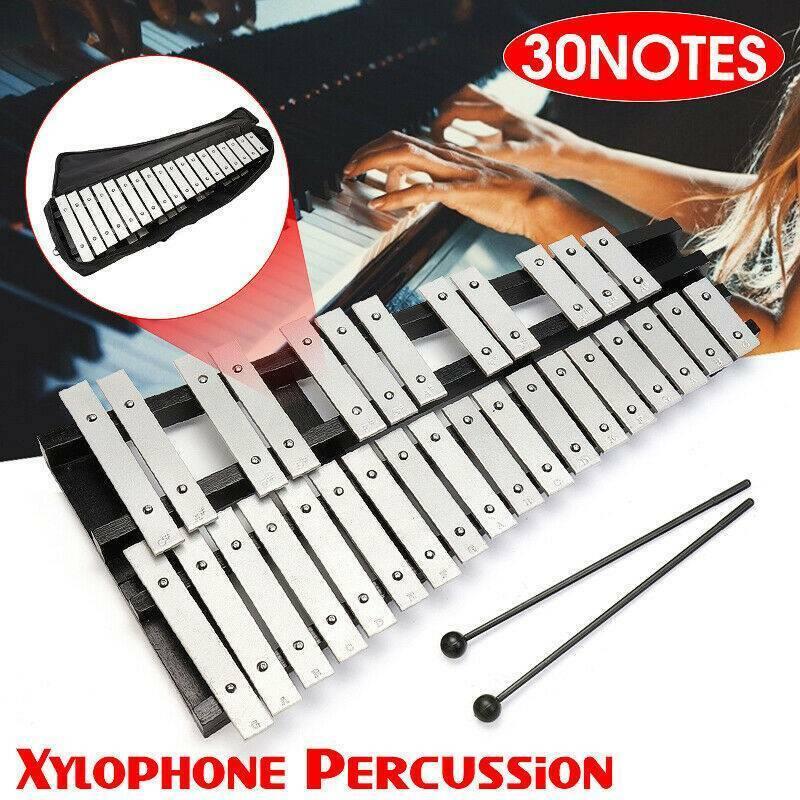 Glockenspiel Xylophon Schlaginstrument Musik Faltbar mit Schlägel 30 Hinweis DE