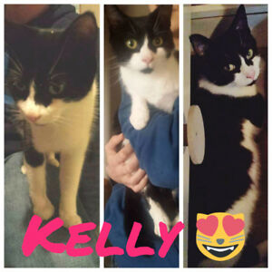 Help Kelly find the perfect home❤
