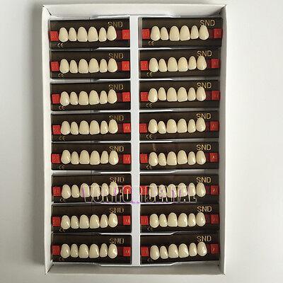 16pcs A1 Upper Anterior S1 Acrylic Teeth Synthetic Resin False Denture New