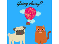 Pet Sitter Sitting Walker Brighton Sussex Dogs Cats etc School Holidays House Property Guardian