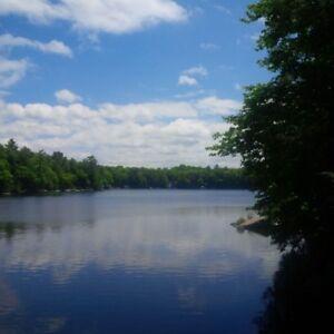 Lovely Lake Muskoka Cottage Rental:  Aug 25-Sept 8 available