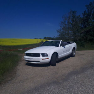 Beautiful convertible mustang for sale or cash and trade!! $OBO$