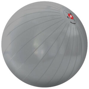 PERFECT CORE 65 cm EXERCISE BALL
