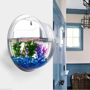 Wall Mount Hanging Fish Bowl Aquarium Tank Beta Goldfish Hanger Plant Room Decor