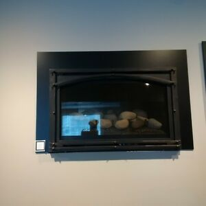 showroom model fireplace gas insert 1 year old