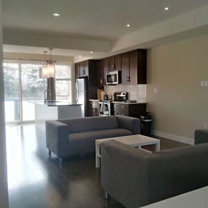 Professional Short Term Furnished Condo!