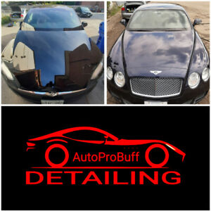 Auto Pro Buff Detailing *** FALL PROMOTION ***