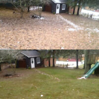 **Let us deal with your leaves!** Fall Yard & Garden Clean-up