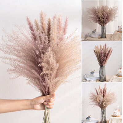 Home Decoration - 10/20/30PCS Artificial Dried Pampas Grass Reed Flower Bunch Home Weeding Decor