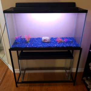 Fish Tank 2 To 5 Gallon | Kijiji in Ontario  - Buy, Sell & Save with
