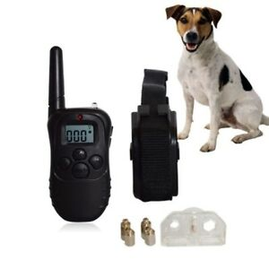Digital dog training system(new)