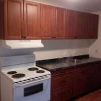 Renovated 2 Bedroom Apartment - All Inclusive