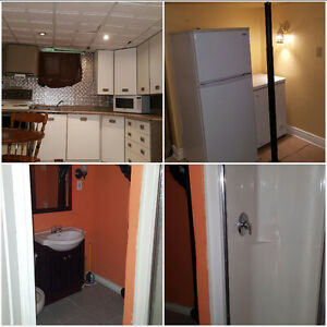 Full basement with kitchen and bath