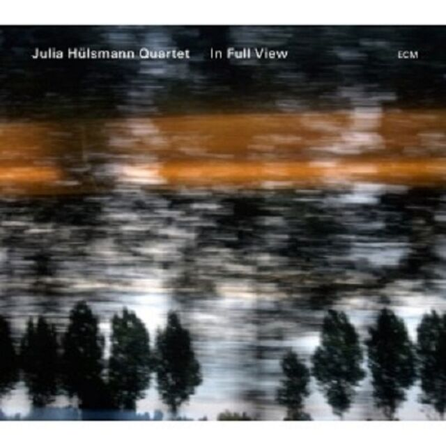JULIA HÜLSMANN QUARTET - IN FULL VIEW  CD  13 TRACKS MODERN JAZZ  NEU