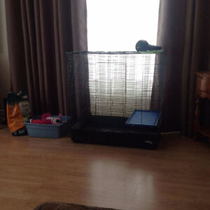Cage pour rongeurs (lapin,cochondinde,furet,ect)