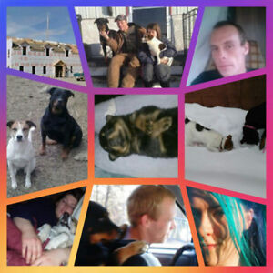 2 awesome friends with even greater dogs iso rental/place 4 rv