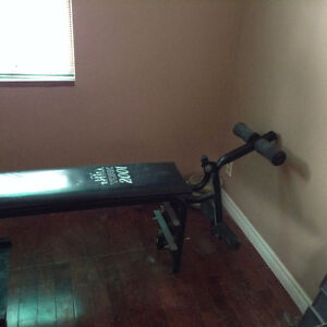 Complete workout bench Kitchener / Waterloo Kitchener Area image 4