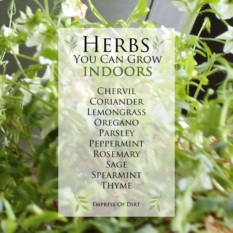 Keep a kitchen herb garden with fresh herbs for cooking
