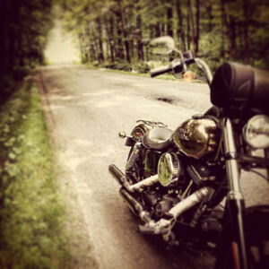 Harley Street Bob 2013