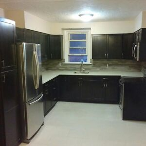 Beautifully Renovated House 4 Bedrooms available!