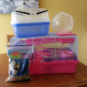Dwarf Hamster cage, exercise ball and carrier!