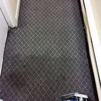 Steam Carpet Cleaning and Flood Extraction & Drying