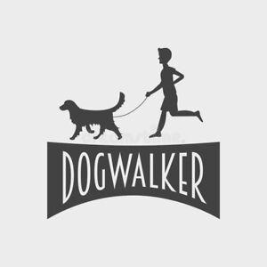 Dog walking services - DOG WALKER downtown Toronto