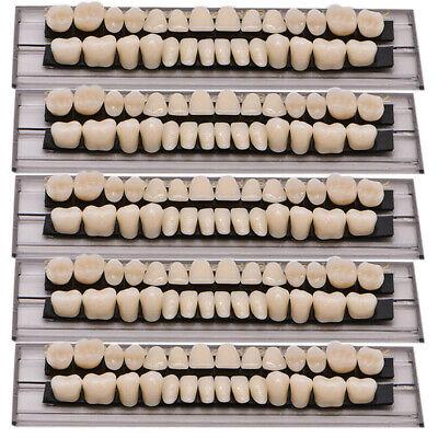 140pcs Denture 23 Shade A2 Acrylic Resin Full Set Teeth Upper Lower Dental New